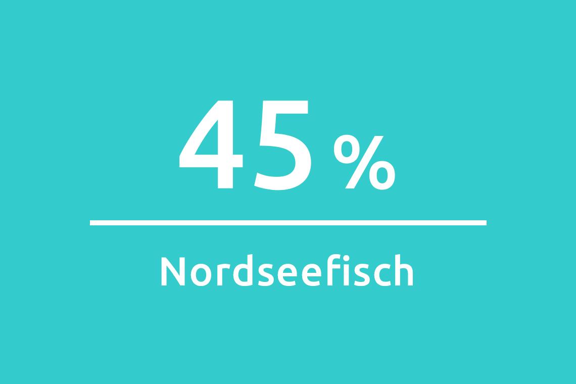 Zahlen und Fakten North Sea fish 2